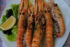 Gambas on a plate. Delicious Gambas on a plate Stock Images