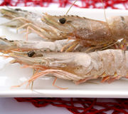 Gambas Royalty Free Stock Photography
