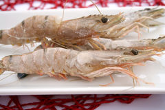 Gambas Royalty Free Stock Photo