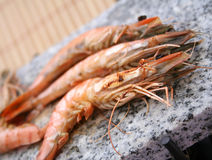 Gambas Royalty Free Stock Image