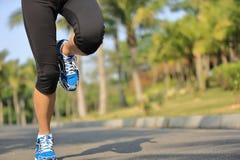 Gambe del pareggiatore di forma fisica che corrono al parco tropicale Fotografia Stock