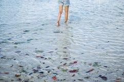 Gambe del ` s delle donne dentro l'acqua Fotografia Stock Libera da Diritti