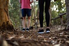Gambe dell'uomo e della donna che stanno nella foresta Fotografie Stock