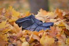 Gambe della donna sulle foglie di autunno in foresta fotografia stock libera da diritti