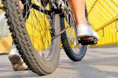 Gambe della ragazza che si siede dalla retrovisione della bicicletta fotografia stock