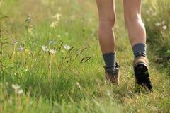 gambe della viandante della donna che camminano sulla traccia in pascolo Immagine Stock