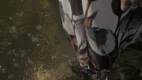 Gambe di una giovane donna in vestito bianco con la stampa floreale che cammina lungo il colore piano del litorale archivi video