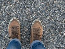 Gambe di una ragazza in scarpe da tennis marroni Fotografia Stock