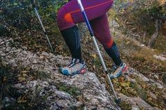 Gambe e bastoni da passeggio Fotografia Stock