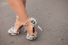 Gambe femminili Fotografia Stock