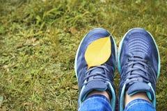 Gambe femminili nella vista delle scarpe da tennis da sopra, concetto di autunno fotografia stock libera da diritti