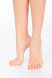 Gambe graziose della donna Immagine Stock