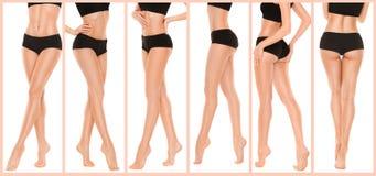 Gambe graziose lunghe della donna su fondo bianco Fotografie Stock
