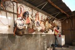 Gambe macellate del maiale che appendono su un gancio e secche contro una parete Fotografia Stock Libera da Diritti