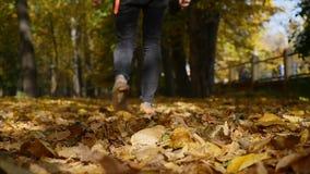 Gambe maschii che camminano sulle foglie di acero cadute gialle in autunno L'uomo va lungo tappeto dalle foglie closeup Movimento archivi video
