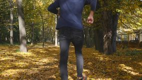 Gambe maschii che camminano sulle foglie di acero cadute gialle in autunno L'uomo va lungo tappeto dalle foglie closeup Movimento video d archivio