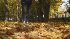 Gambe maschii che camminano sulle foglie di acero cadute gialle in autunno L'uomo va lungo tappeto dalle foglie closeup Movimento stock footage