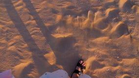 Gambe maschii che camminano vicino all'oceano Fine in su stock footage