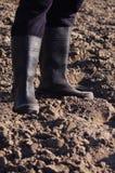 Gambe maschii nei gumboots sul campo arato Fotografie Stock Libere da Diritti