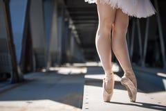 Gambe potate dell'immagine della ballerina graziosa dentro Immagine Stock