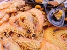 Gamberetti e cozze cucinati Fotografia Stock Libera da Diritti