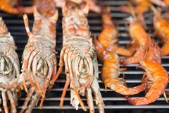 Gamberetti freschi sul barbecue all'aperto Fotografia Stock Libera da Diritti