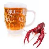 Gamberi e birra Fotografie Stock