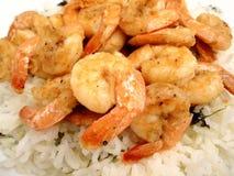 Gambero dell'aglio sopra il riso del Cilantro immagini stock libere da diritti