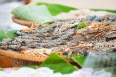 Gambero ed aragosta freschi in canestro di plastica da vendere immagini stock libere da diritti