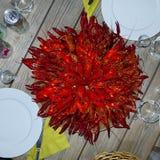 Gambero rosso fotografia stock