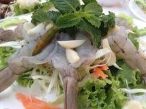 Gambero in salsa di pesci Immagine Stock
