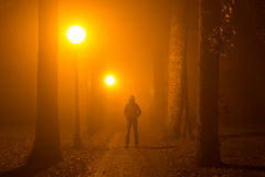 Gamberro en la niebla fotos de archivo libres de regalías
