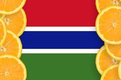 Gambia flagga i vertikal ram för citrusfruktskivor arkivbild