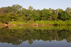 Gambia river in Niokolo Koba stock photography