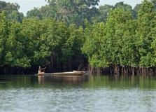 Gambian Woman paddling pirogue Royalty Free Stock Photography