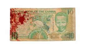 10 Gambianer-Dalasibanknote, blutig Lizenzfreies Stockfoto
