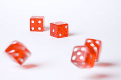 The Gamble. Five red poker dice on a white background Stock Photography