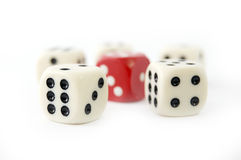 Gamble Stock Images