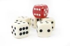 Gamble Stock Photography