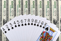 Gamble concept Stock Photography