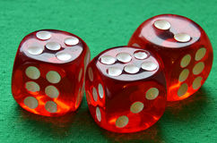 Gamble dices Royalty Free Stock Image