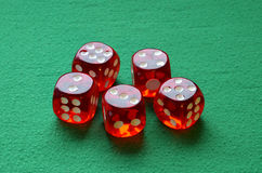 Gamble dices Stock Images