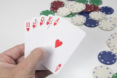 Gambler holding a winning poker hand. Of a straight royal flush in hearts above a white table with scattered casino chips Royalty Free Stock Photos