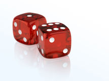 Gambling dices. On reflective background Stock Photos
