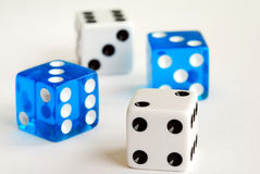 Gambling with dices Stock Photography