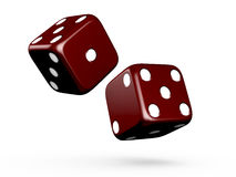 Gambling Dices. Dark red gambling dices on isolated white background Royalty Free Stock Photos