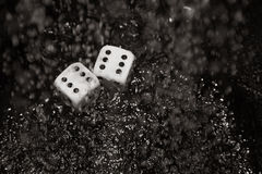 Gambling dices under the rain Royalty Free Stock Photography