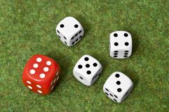 Gambling difference. Red die wins over four white dice on green floor Stock Photo