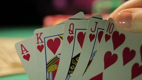 Gambling fraud, gamer catches royal flush, dollar bills, pile of chips on table. Stock footage stock footage