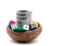 Gambling on a nest egg Royalty Free Stock Images
